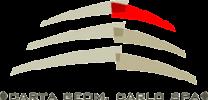 logo carta .png