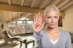 Da Isover Saint-Gobain SyntoDefense, il tetto anti-zanzare