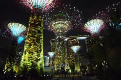 Mapei per il Gardens by the Bay di Singapore