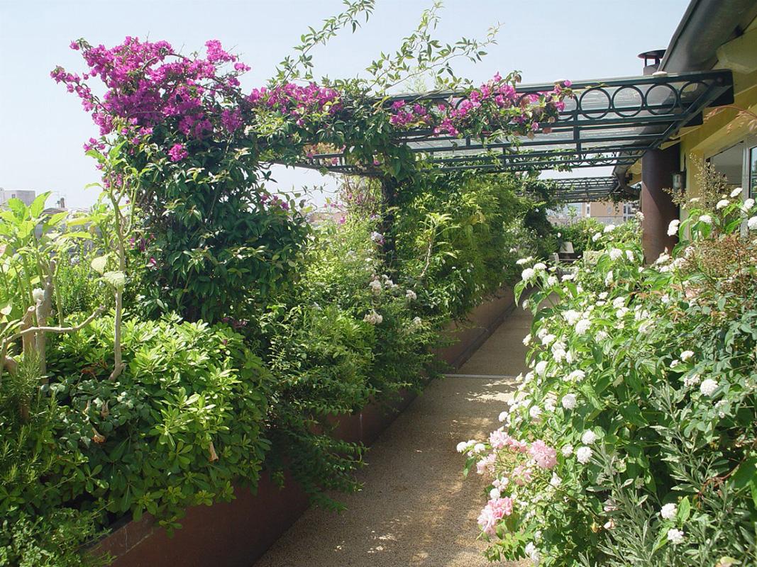 Piscine e giardini paghera uno stile per ogni esigenza - Giardini sui terrazzi ...