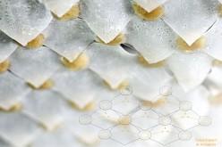 Il vetro-spugna che può rinfrescare l'ambiente