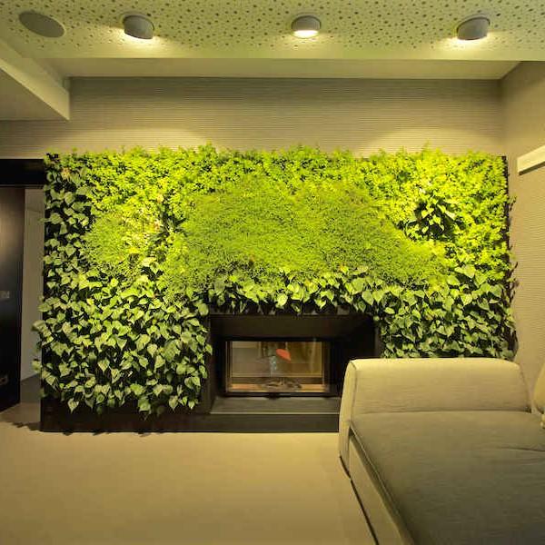 Giardino verticale interno con sundar youtrade web for Giardino verticale interno
