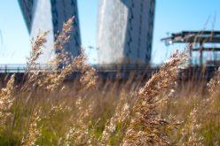 Green Rating, un nuovo benchmark per edifici sostenibili
