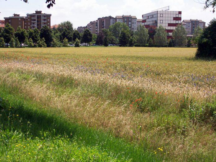 Milano, periferia Est