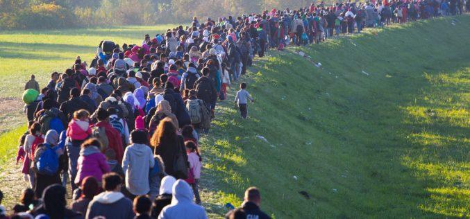 Sotto la lente l'impatto dell'immigrazione sulla società. Con una sorpresa