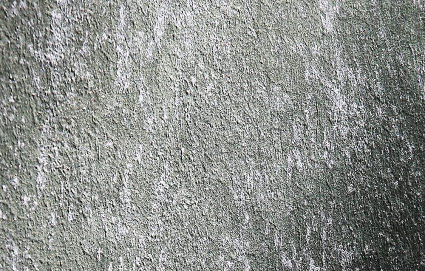 Decorazioni-pareti