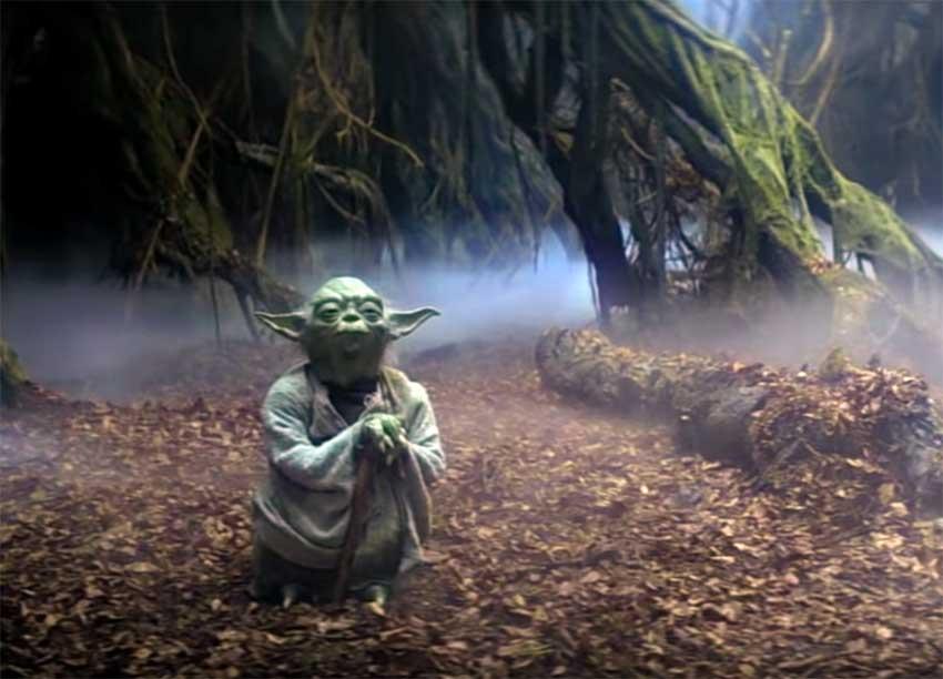 Il venerabile Yoda