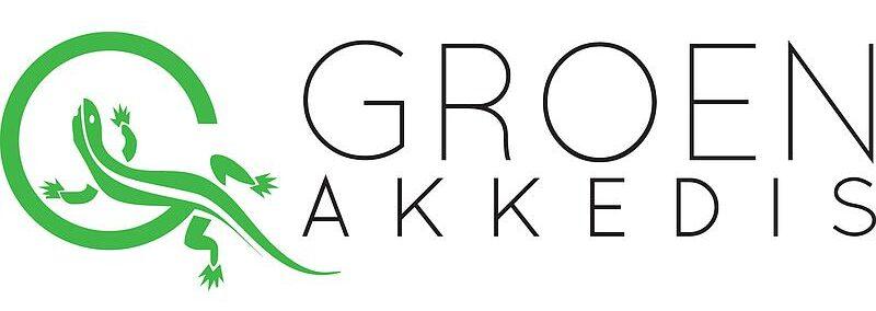 groen-akkedis
