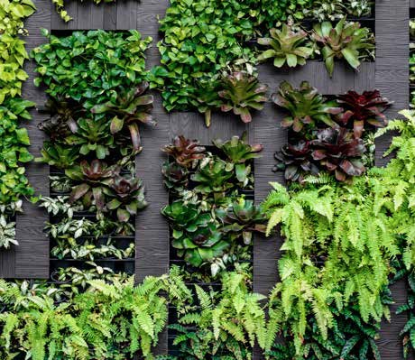 green-indoor