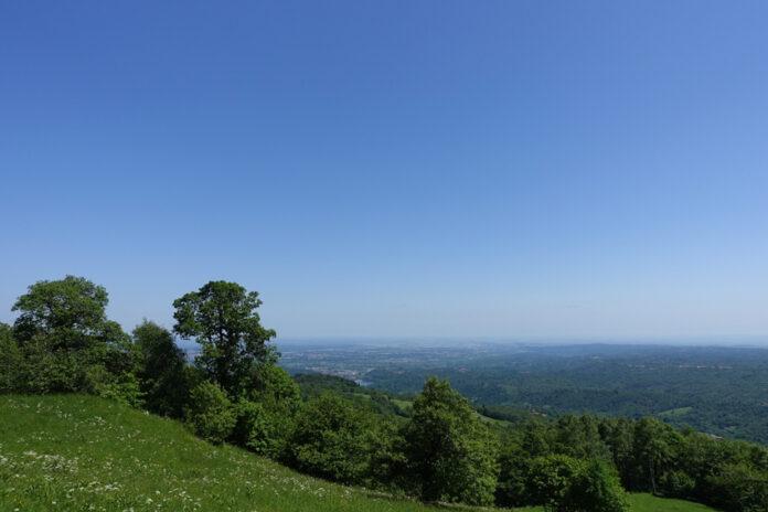 Alberi e monti