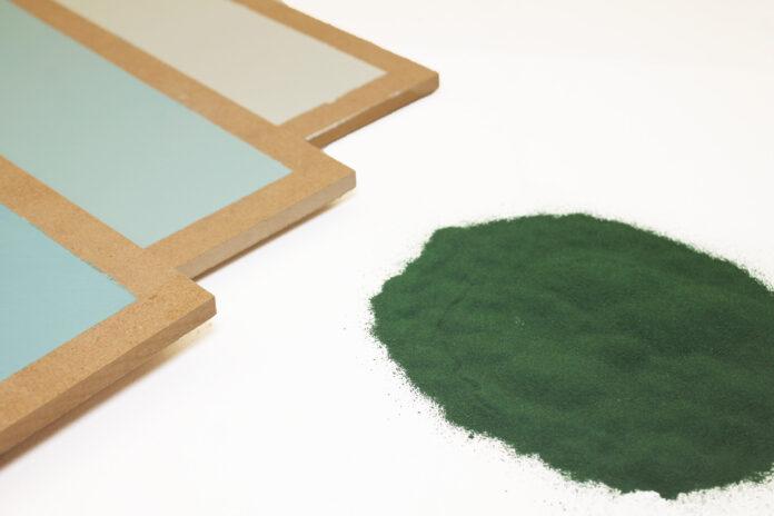pittura-spirulina-padiglione-italia-expo-dubai